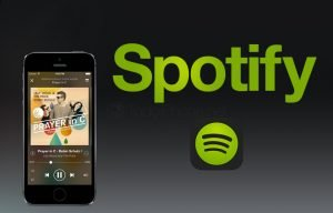 how to fix spotify not working on iPhone SE (2020)